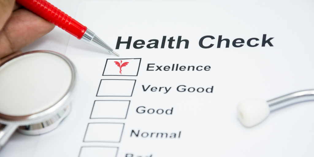 Compliance Health Check Services